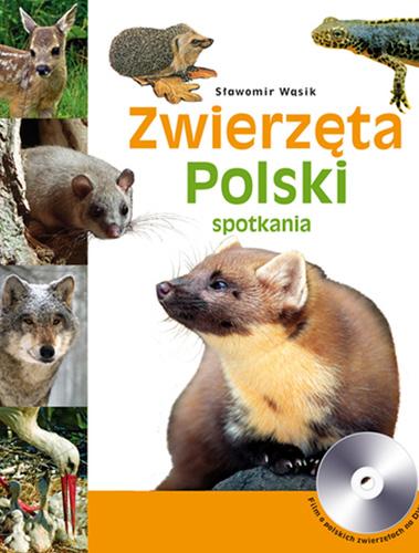 zwierzeta-polski